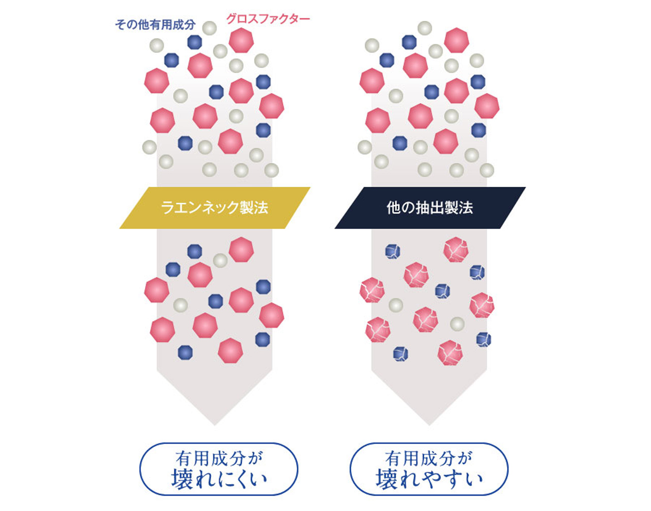 グロスファクターを壊さず抽出することができる「ラエンネック製法」の図解